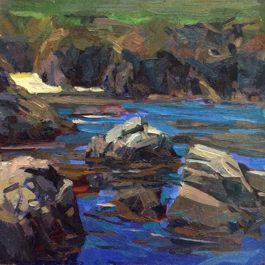 Blue Cove, Big Sur 2015