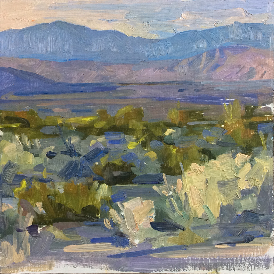 Silver Dusk, Anza-Borrego • Joe Forkan 2015 12 x 12 inches