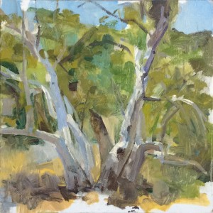 Summer Light, Santiago Canyon • Joe Forkan 2015 12 x 12 inches